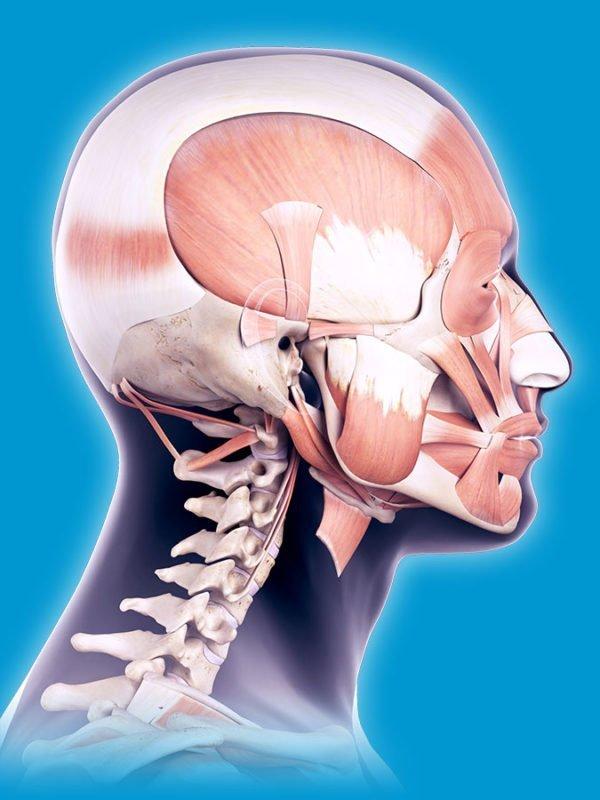 TMJ Disease Progression
